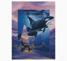 Orca Song by Graeme  Stevenson