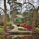 Savill Gardens, Windsor by Astrid Ewing Photography
