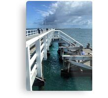 Jetty Arm Metal Print
