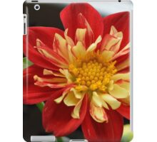 Fire Blossom iPad Case/Skin