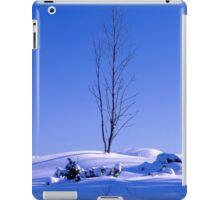 Lonely tree in winter iPad Case/Skin