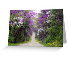 Redbuds in Bloom Greeting Card