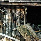 The Barn 2 by Robin Black