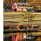 The Barn 3 by Robin Black
