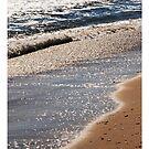 Seashore by Robin Lee