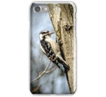 Woodpecker iPhone Case/Skin