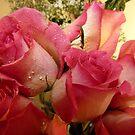 Pink is soooo Pretty~! by Brenda Dahl
