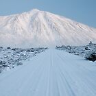 White road to Teide by Raico Rosenberg