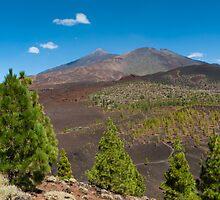 Summer at Teide by Raico Rosenberg