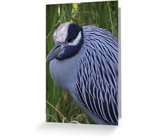 White Crowned Heron - Garza De Corona Blanca Greeting Card