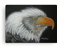 Steve's Bald Eagle Canvas Print