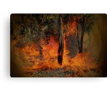 Summer Bush Fire Canvas Print