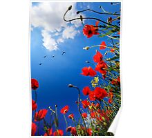 Remembrance Poster