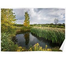 An idyllic pond, surrounded by autumn trees and green grass Poster