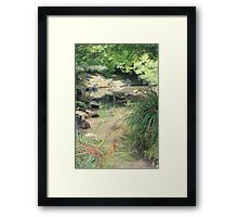Bridge View - Hamilton Gardens Framed Print