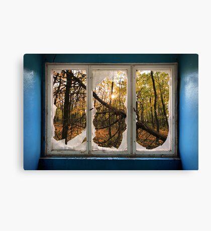 Wonderful View Canvas Print