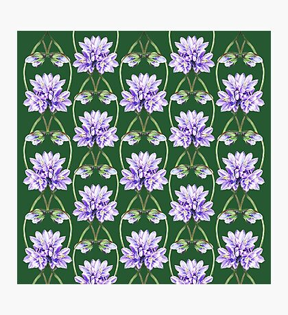 Purple Flowers Lace On Green Field Pattern Photographic Print