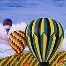 California Balloons by Graeme  Stevenson