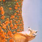 Curious Petals by Graeme  Stevenson
