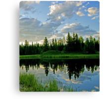 Landscape Reflection Canvas Print