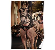 Horse and Buggy ride down memory lane Poster