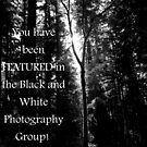 Feature Banner for Black and White Photography Group by Megan Martin
