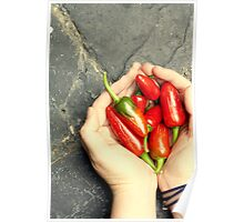 Red Hot Chillies Poster