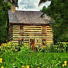 My Dream Home by Donnie Voelker
