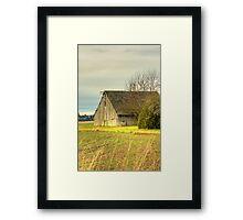 Elder Statesman Framed Print