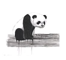 Bleeding Panda Photographic Print