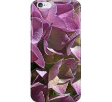 Happy Hydrangea iPhone Case/Skin
