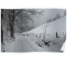 Snowy path near Thumersbach Poster