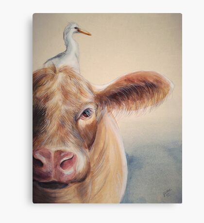 Roundabout Cow Canvas Print