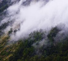Misty Mountain Hop by Caroline Gorka