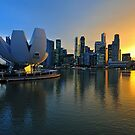 Marina Bay, Singapore at sunset (2) by Ralph de Zilva