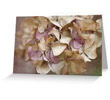 Textured Hydrangea Greeting Card