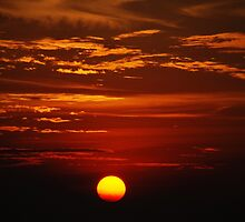 Sunset by Polly Palmer