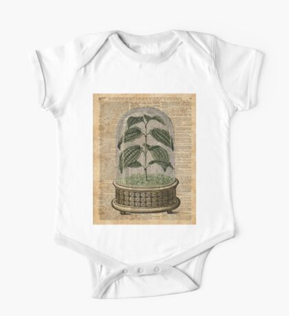 Plant Under Bell-glass Vintage Illustration Over A Old Dictionary Page One Piece - Short Sleeve
