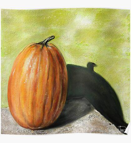 Single Pumpkin Still Life Poster