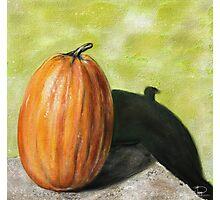 Single Pumpkin Still Life Photographic Print