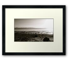 Still not dull Framed Print