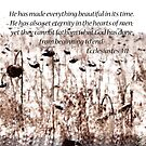Ecclesiastes 3:11  by Pietrina Elena Photography