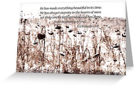 Ecclesiastes 3:11  by Pietrina Elena Photography