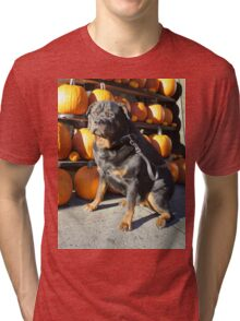 Happy Halloween Tri-blend T-Shirt