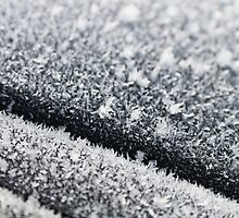 Frosty roof by JHuntPhotos