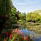 Claude Monet's jardin d'eau by Alex Cassels