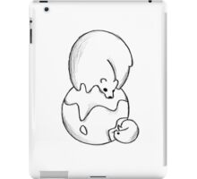 Getting smaller iPad Case/Skin