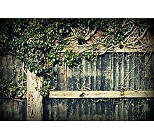 Farm fence Photographic Print
