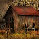 """"""" Love Shack """" by canonman99"""