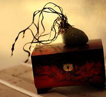 Pandoralia by Aimee Stewart